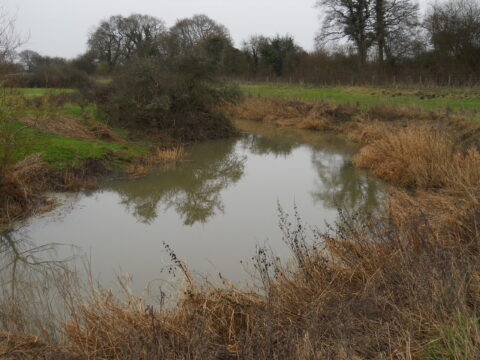 River Arun, Lee Place