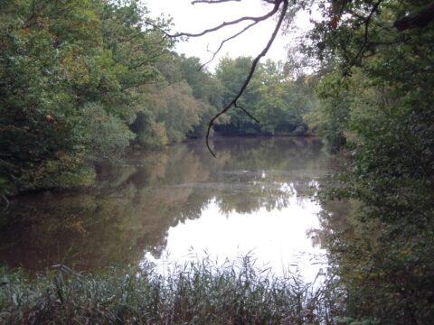 Roosthole Pond